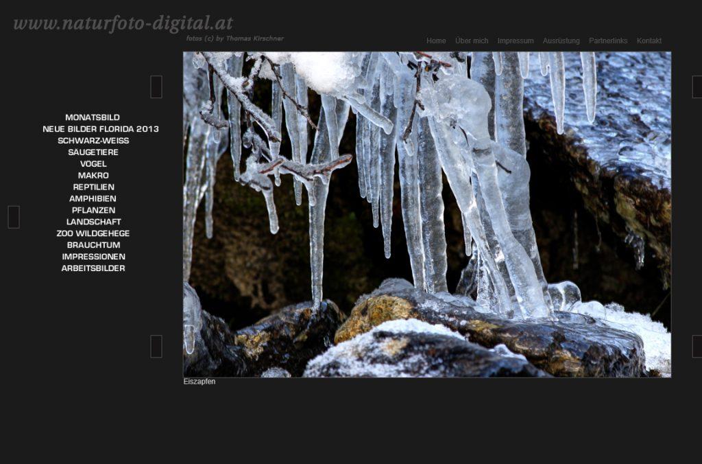 Screenshot der alten Website