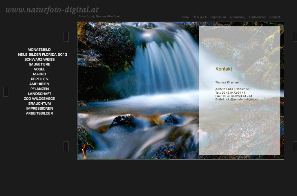 Screenshot der alten Website